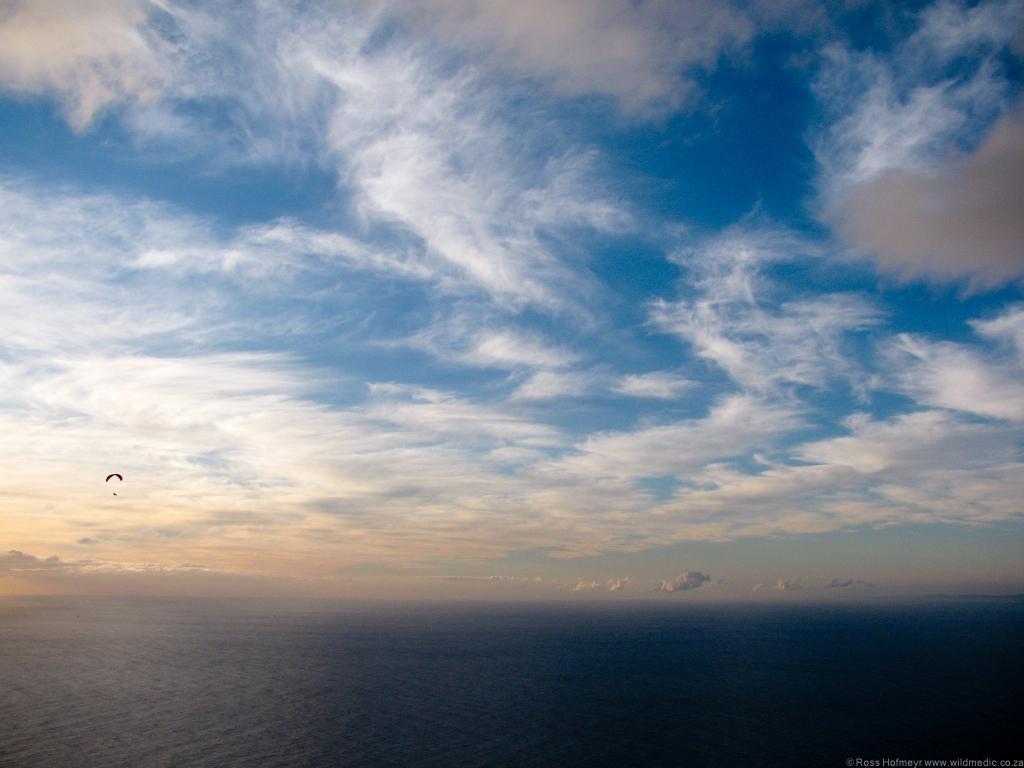 Gliding back over the sea