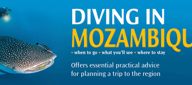 Diving in Mozambique